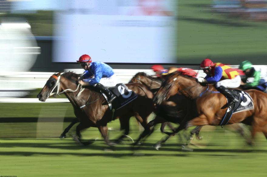 Bad Barriers Ruin Rosehill Hopes