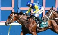 Bowman Back On Le Romain For Epsom