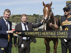 Stablemates Likely To Stay In Sydney This Weekend