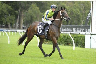 Blinkers For Mares' Weekend Assignments