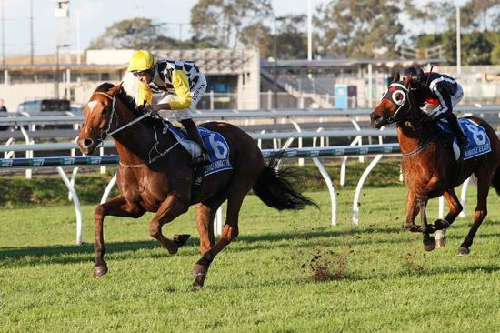 Winkers To Help Clearly's Everest Assault