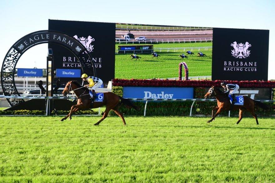 Bowman Clearly Right To Stay With Stradbroke Favourite