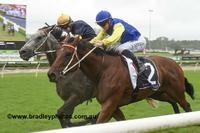 Stablemates To Trial Again