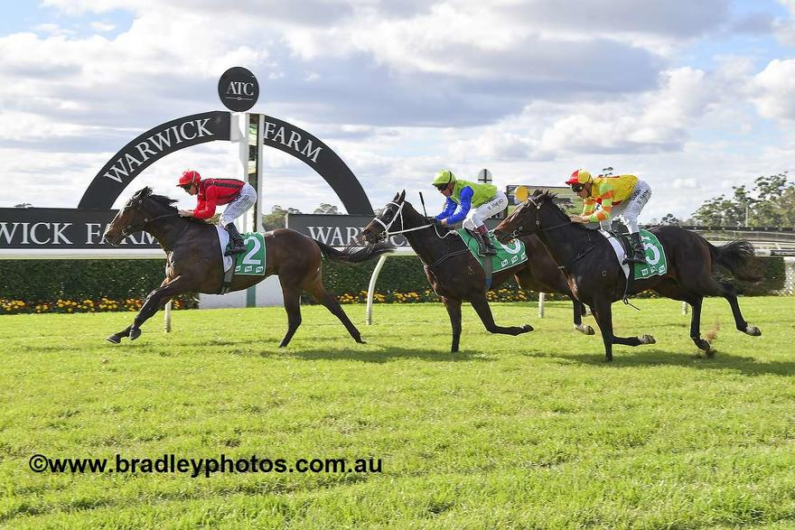 Code Fitter For Stable Debut