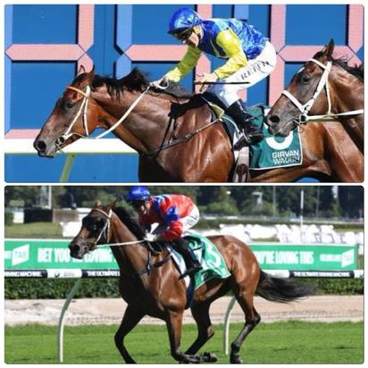 Stablemates To Trial At Randwick On Monday