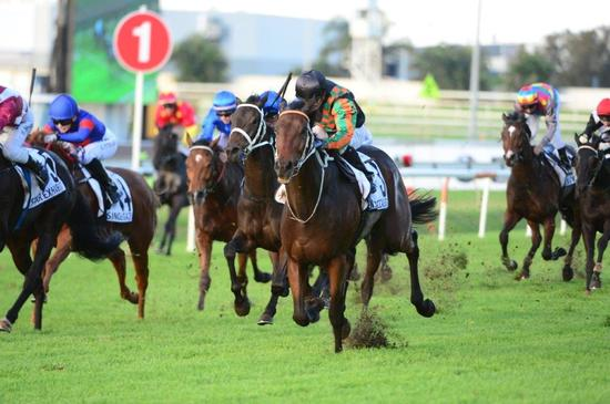 An Occasion Perhaps To Tackle Cox Plate