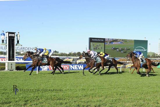 Wait On Doukhan Cup Day Start At Flemington