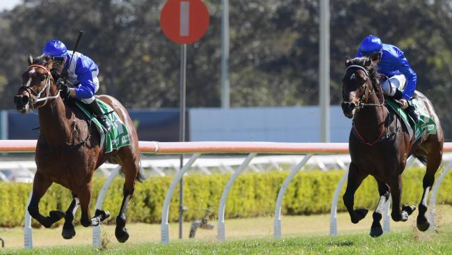 """""""Fabulass"""" Miss Out To Emulate Mum In Flight Stakes"""