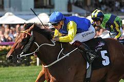 Le Romain Likely Epsom Absentee
