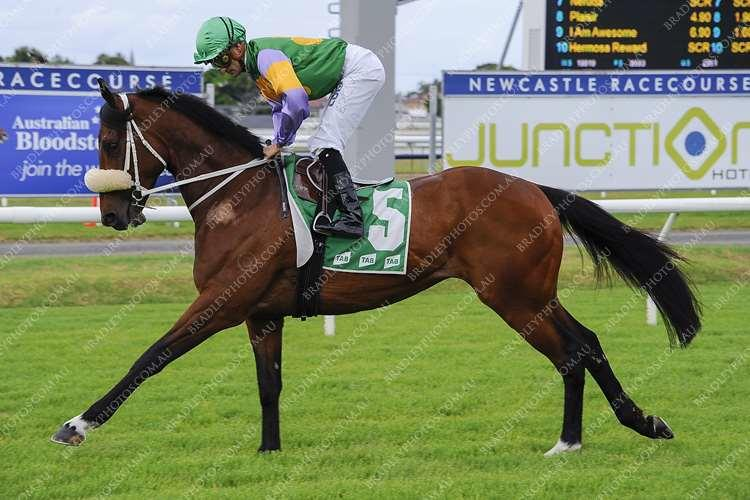 High Power Ready For Rosehill Assignment