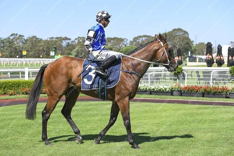 Lees Opts For Canterbury Tonight For Raiden