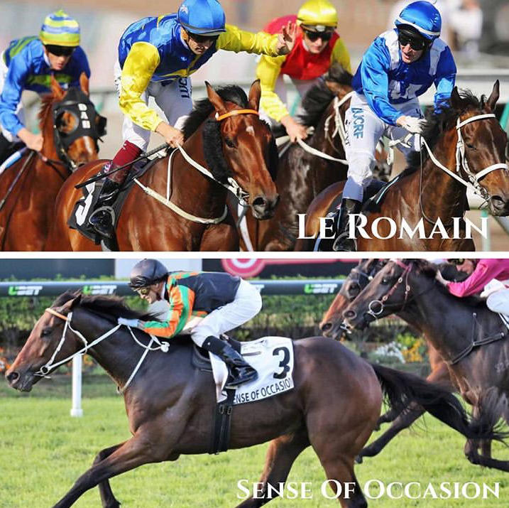 Sydney Or Melbourne First-Up For Le Romain
