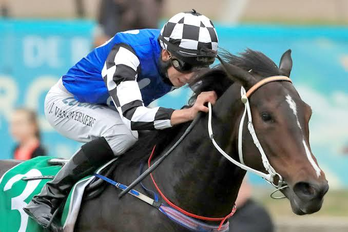 A Trio Of Chances For Coolmore Breakthrough