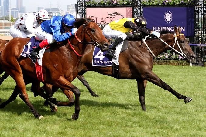 """""""Time"""" May Be Running Out For TJ Smith Stakes"""