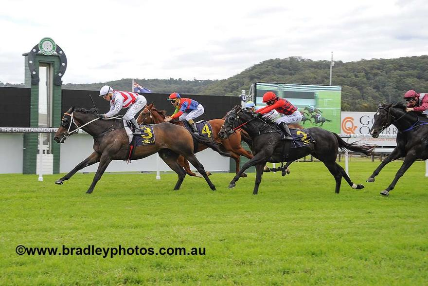 Heavy Track For Kembla Qualifier