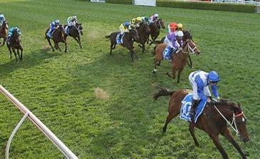 "Filly Capable Of A ""Fabulass"" Guineas Upset"