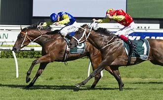 Don't Overlook Le Romain In Doncaster Mile