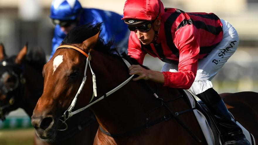 Gem Song Seeking To Become Part Of Doomben Cup History