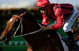 """""""Gem"""" Could Be On Song For Queensland Derby"""