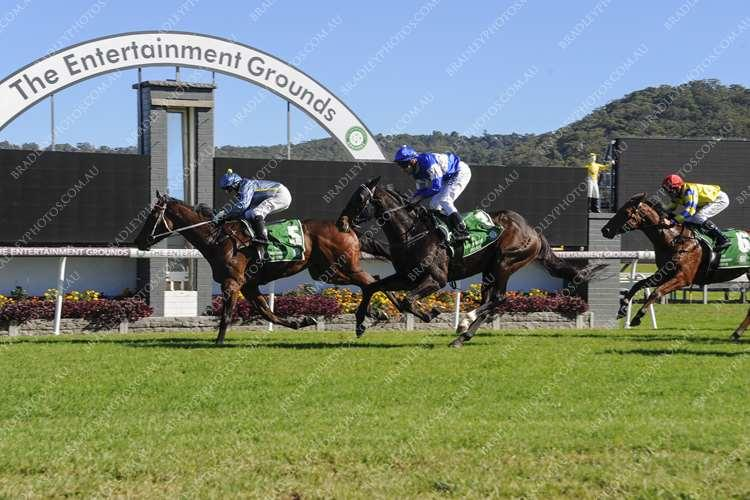 200 Plus Winners Up - And Now For Queensland Oaks