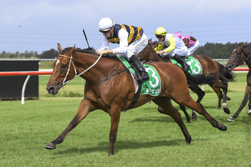 Import Chasing Early Melbourne Cup Spot