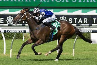 Aliferous Ready For Derby Back-Up