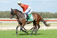 Canberra races tomorrow - Friday 20 October