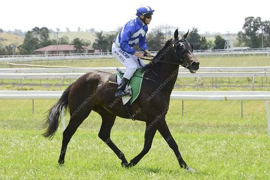 Wyong races today