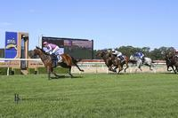 Quartet bound for Wyong on Tuesday