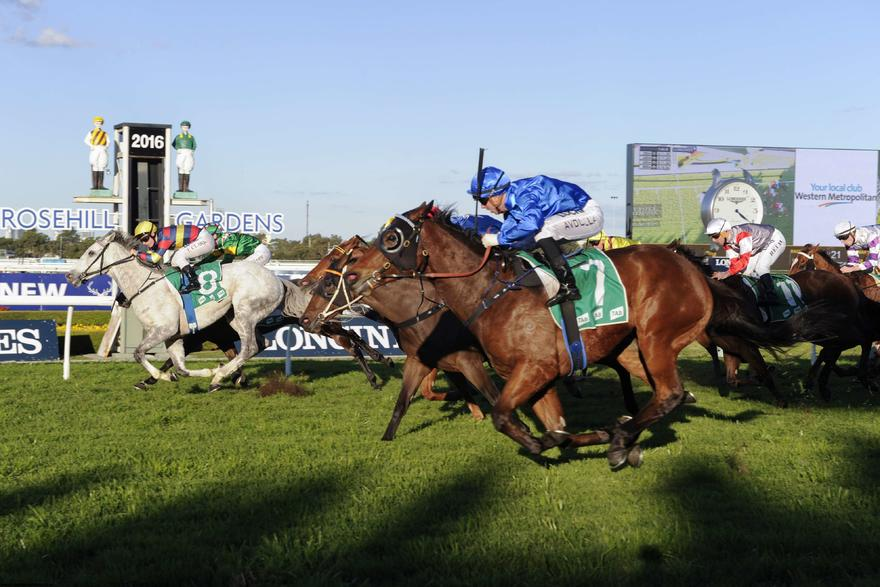 His Majesty set to resume at Rosehill Gardens on Saturday