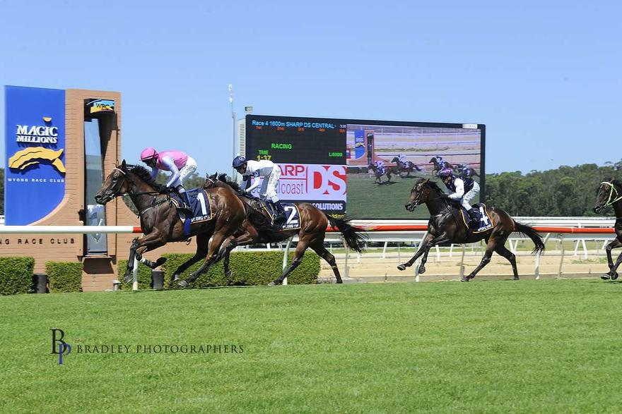 Wyong Tuesday