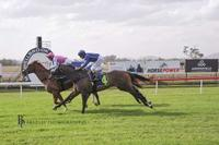 Boca Grande resumes victorious at Muswellbrook