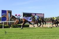 Race To Race Double for Waugh Racing
