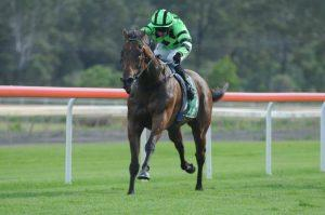 Trio bound for Wyong racing on Tuesday