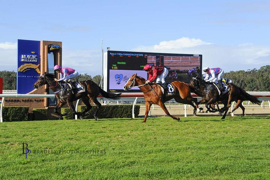 Trumbull set to fly the flag at Wyong on Saturday