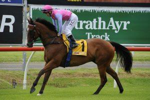 King Hewitt takes the step up to Metropolitan racing on Wednesday