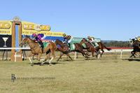 White Boots Heads to Tuncurry Cup on Friday!