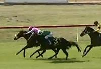 3 Great Chances head to Muswellbrook on Tuesday