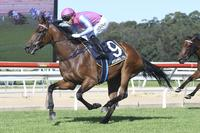 Two Super Chances at Gosford on Tuesday!
