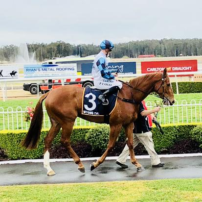 Seeingisbelieving Continues his Great Form with a Gutsy 2nd at Canterbury!