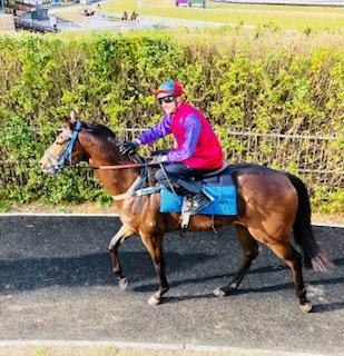 Goathland Ready for Race Return