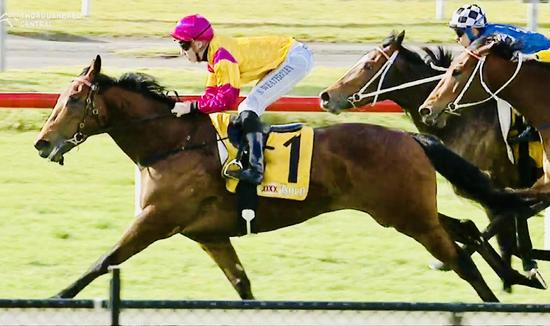 Spring Charlie Heads the Team for Randwick on Monday!