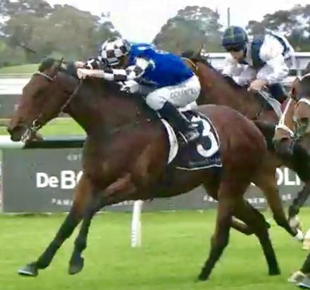Tip Top Training Performance from Kim on Saturday at Rosehill!