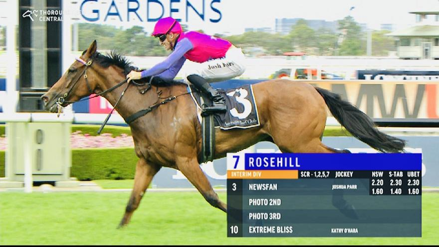 Newsfan Shows Electrifying Turn of Foot at Rosehill on Saturday