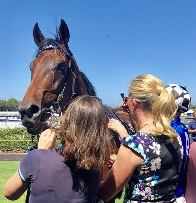 Our Century Finishes 2nd in ATC Cup on Saturday at Rosehill!