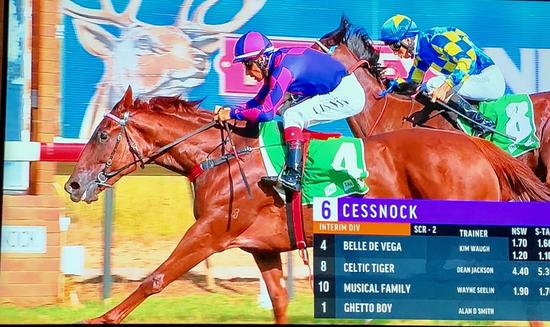 2 in a Row for Belle De Vega at Cessnock on Tuesday!