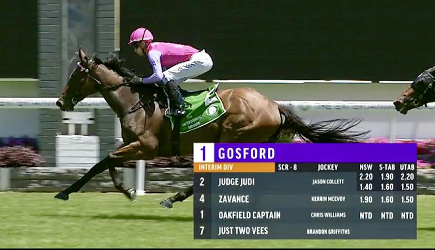 Judge Judi Bolts in at Gosford on Thursday!