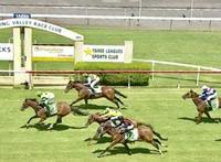 Dominant Maiden Win to Equiseta on Sunday at Taree