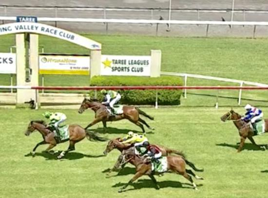 Dominant Maiden Win to Equiseta on Sunday at Taree