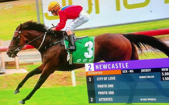 City of Love Breaks through for Well-deserved Maiden Win at Newcastle!
